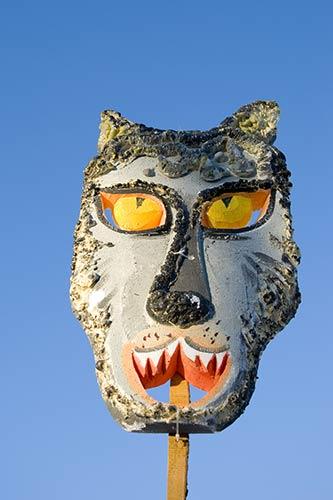 A Wolf Mask