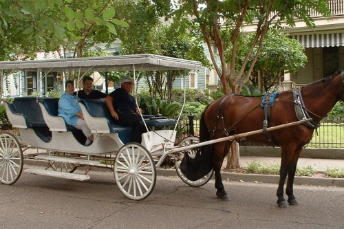 horse-and-carriage