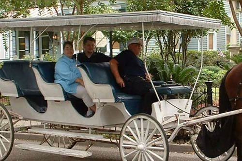 natchez-horse-drawn-carriage