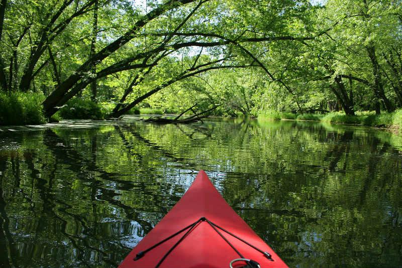 Kayak Trips in Natchez