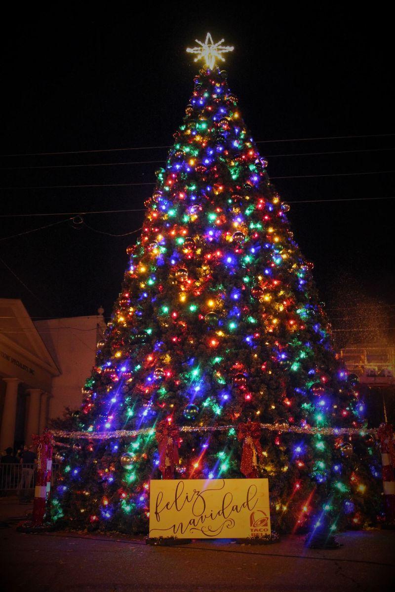 Natchez Christmas Tree